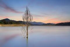 Wyangala Waters Australia Stock Photography