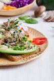 Wybór avocado grzanki na zbożowym chlebie Zdrowy opierający się obraz stock
