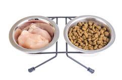 Wybór między naturalnym mięsem i suchym zwierzęcia domowego jedzeniem zdjęcia stock