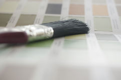 Wybierać twój kolor Obrazy Stock