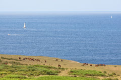 wybrzeża atlantyckiego Fotografia Royalty Free