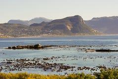 Wybrzeże Afryka - przylądka punkt w głazach Zdjęcia Royalty Free