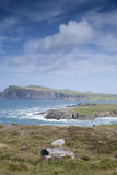Wybrzeże blisko Ballyferriter wioski, Dingle półwysep Zdjęcie Stock