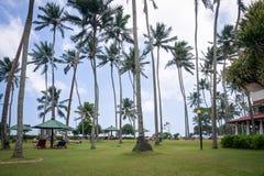 Wybrzeże blisko plaży Obraz Royalty Free