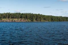 Wybrzeże i las na wybrzeżu Zdjęcie Stock