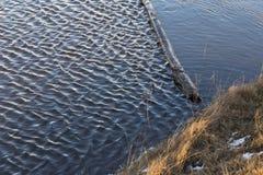 Wybrzeże jezioro z błękitne wody Zdjęcia Royalty Free