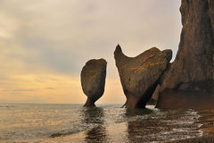 wybrzeże kołysa dziwacznego Zdjęcia Stock