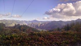 Wybrzeże Pacyfiku - Przegapiać góry Oregon zdjęcia stock