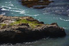 Wybrzeże Pacyfiku wrażenia punkt areny światło, Kalifornia usa Zdjęcia Royalty Free