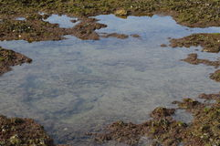 Wybrzeże plaże Andalucia Zdjęcia Royalty Free