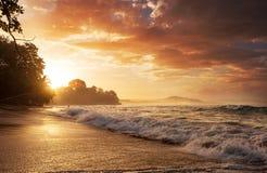 Wybrzeże w Costa Rica obrazy royalty free