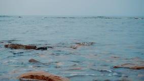 Wybrzeże z kamieniami na których znajduje fala zbiory