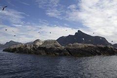 Wybrzeże Zdjęcia Royalty Free
