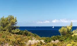 Wybrzeże Corsica wyspa Zdjęcie Royalty Free