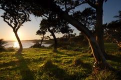 wybrzeże dominican Obraz Stock