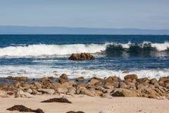 wybrzeże kaliforni sceniczny Obraz Royalty Free
