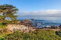 wybrzeże kaliforni sceniczny Zdjęcie Royalty Free