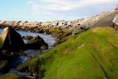 Wybrzeże kamienie Fotografia Royalty Free