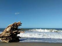 Wybrzeże Kolumbia fotografia royalty free