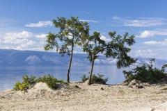 Wybrzeże wyspa Olkhon przy Jeziornym Baikal Obraz Royalty Free