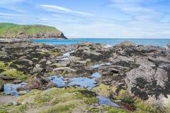 Wybrzeże z falezami blisko Pennan Fotografia Royalty Free
