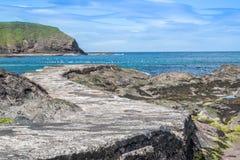Wybrzeże z falezami blisko Pennan Obraz Royalty Free