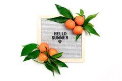 Wycena - Cze?? lato Rabatowa rama robi? mandarynki z zielonymi li??mi obraz stock