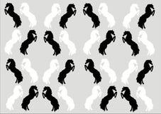 Wychowów koni Monochromatyczny Tapetowy tło Obraz Royalty Free