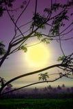 Wychwytany wschód słońca Obrazy Royalty Free