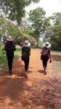 Wycieczka Afryka, Tanzania Obraz Royalty Free