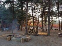 Wycieczka Korea Zdjęcia Royalty Free