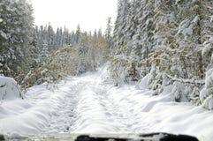 Wycieczka przez Syberyjskiej lasowej tajgi w wieczór na droga samochodzie, Troszkę śnieg przechodzący zdjęcie stock