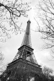 Wycieczka turysyczna Eiffel między drzewami, Paryż Fotografia Stock