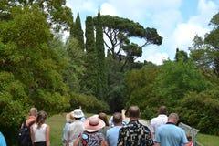 Wycieczka turysyczna turyści w parku Fotografia Stock