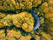 Wycieczki samochodowej synklina las na wijącej drodze w jesień sezonu aer fotografia royalty free