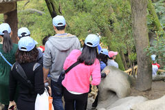 Wycieczki turysycznej grupy wizyty gulangyu sceniczny teren Zdjęcia Stock
