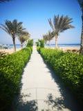 Wycieczki turysycznej lato Egipt zdjęcie royalty free