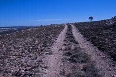 WYCIECZKOWAĆ ślad NA konturze wzgórze Z drzewem NA horyzoncie zdjęcie royalty free