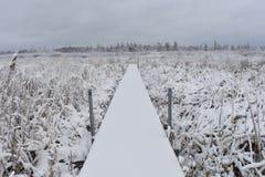 Wycieczkować ścieżkę w zimie Obraz Stock