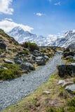 Wycieczkować ścieżkę Wspinać się Cook, Nowa Zelandia Obraz Stock