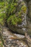 Wycieczkować ślad w parkowym Słowackim raju Zdjęcia Stock