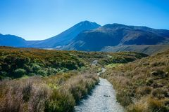 Wycieczkować tongariro wysokogórskiego skrzyżowanie, wulkanu mt ngauruhoe, nowy zealan Zdjęcia Royalty Free