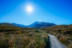 Wycieczkować tongariro wysokogórskiego skrzyżowanie, wulkanu mt ngauruhoe, nowy zealan Zdjęcie Stock