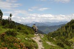 Wycieczkować w Alps obrazy royalty free