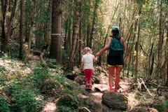 Wycieczkować w drewnach Matka i córka chodzimy na ścieżce obrazy royalty free