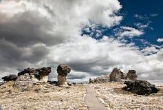 Wycieczkować na górze Skalistej góry parka narodowego Kolorado fotografia royalty free