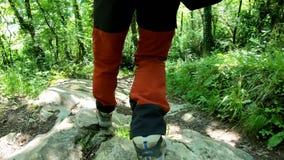 Wycieczkowa? trekking w g?rach Tylni widok plecy chodzi po drodze mężczyzna zbiory