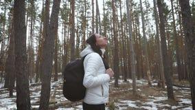 Wycieczkowicz dziewczyna z plecaka odprowadzeniem w sosnowym lesie, tylni widok Aktywny styl życia i przygoda w przyrody naturze zbiory