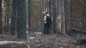 Wycieczkowicz dziewczyna z plecaka odprowadzeniem w sosnowym lesie, tylni widok Aktywny styl ?ycia i przygoda w przyrody naturze zdjęcie wideo
