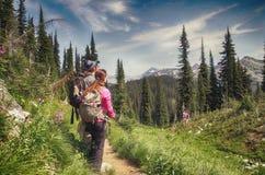 Wycieczkowicz, góry Revelstoke park narodowy, Kanada Obrazy Stock